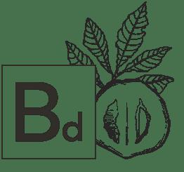 Bd - Biologi