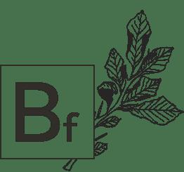 Bf - Biologi